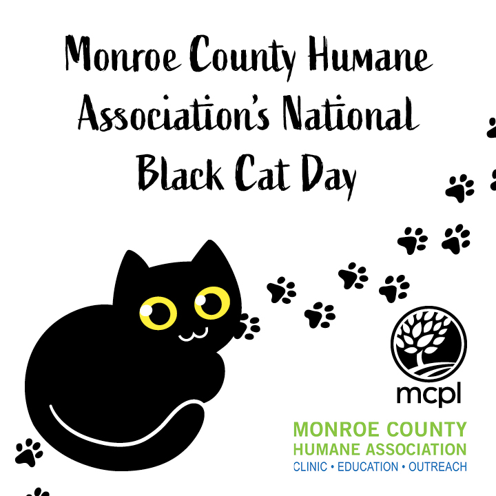 Monroe County Humane Association's National Black Cat Day