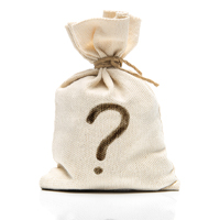 Mystery Puzzle Bag