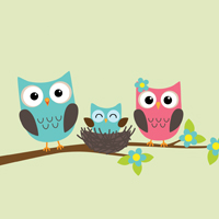 Story Time Owls