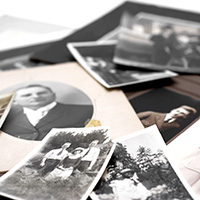 Close-up of old family photographs