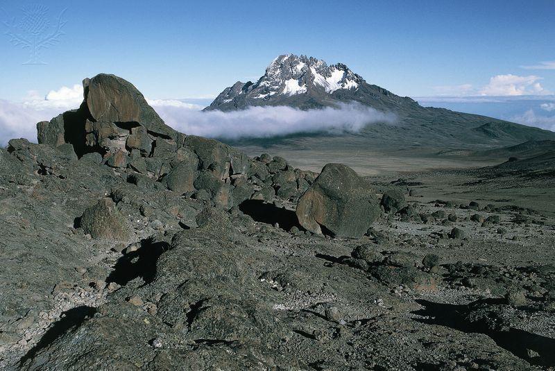 Mt. Kilimajaro