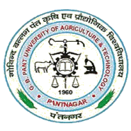 SRF Agronomy Jobs in Nainital - GB Pant University of Agriculture - Technology