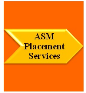 ASM Placement Services