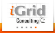iGrid Consulting Solutions Pvt Ltd