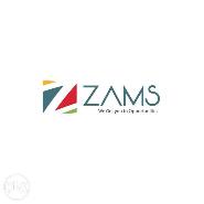 Zams Ventures Consultants
