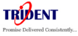 Trident Information Systems Pvt. Ltd