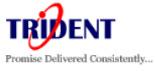 Trident Information Systems Pvt. Ltd