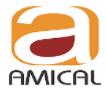 Amical Consultancy Services Pvt Ltd