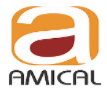 Amical Consultancy Services Pvt Ltd