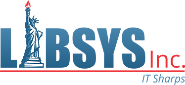 Libsys IT Services Pvt Ltd