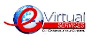 Evirtual Services LLC