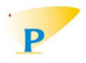 Penna Cement India Limited