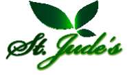 Direct Sales Executive Jobs in Bangalore,Belgaum,Bellary - St. Jude Herbals Pvt. Ltd.