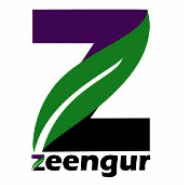 Zeengur Technologies Pvt. Ltd.