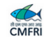 SRF Fishery Biology Jobs in Mumbai - CMFRI