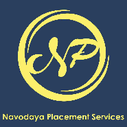 Business Development Executive Jobs in Delhi - Navodaya Placement Services