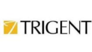 Ad operation Analyst Jobs in Bangalore - Trigent Software
