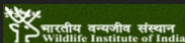 Project Fellow Wildlife Sciences Jobs in Dehradun - WII