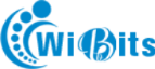 Wibits Web Solution LLP