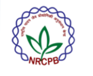 JRF/ Project Assistant Plant Science Jobs in Delhi - NRCPB