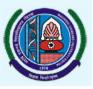 Maharshi Dayanand University