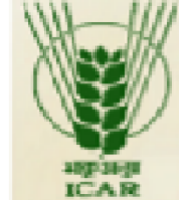 Research Associate/ Sr. Research Fellow Plant Breeding Jobs in Bharatpur - Directorate of Rapeseed-Mustard Research