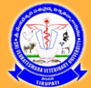 Research Assistant/Contract Teaching Faculty Jobs in Tirupati - Sri Venkateswara Veterinary University