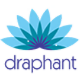 WPC Executive Jobs in Gurgaon - Draphant Consultants Pvt Ltd
