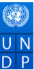 Individual Consultant – District Project Executive Jobs in Bhubaneswar - UNDP