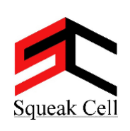 Business Development Executive Jobs in Noida - Squeak Cell