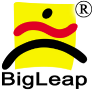 Bigleap software solutions