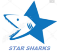 Technical Sales Engineer Jobs in Bangalore,Hyderabad - Star Sharks
