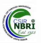 Scientist/Sr. Scientist Jobs in Lucknow - NBRI