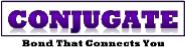 Conjugate HR Services