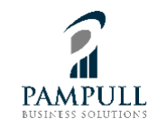 Pampull Business Solutions