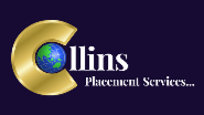 Finance Manager Jobs in Pune - Collins Placement Services