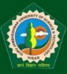 Hindi Officer/ Junior Programmer Jobs in Hisar - Guru Jambheshwar University of Science & Technology