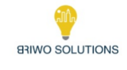 Finance executive Jobs in Gurgaon,Noida - BRIWO Solutions Pvt Ltd