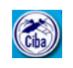 Young Professional II Jobs in Chennai - CIBA