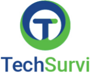 TechSurvi Consultancy Services