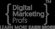 Digital Marketing Trainer Jobs in Delhi - Digital Marketing Profs