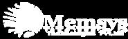 Web Developer Jobs in Salem - Memsys Technologies Private Limited