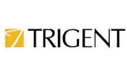 Software Trainee Jobs in Bangalore - Trigent Software