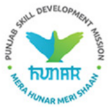 Block Mission Manager / Block Thematic Expert/ Associate Project Consultant Jobs in Chandigarh (Punjab) - Punjab Skill Development Mission