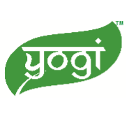 Web Content Writer Jobs in Jaipur - Yogi Globals