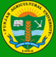 SRF Agriculture Jobs in Ludhiana - Punjab Agricultural University