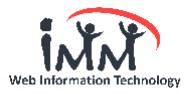 IMMWIT Pvt Ltd.