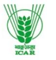 Research Associate Economics Jobs in Delhi - ICAR