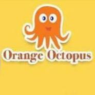 Graphic Designer Jobs in Delhi - Orange Octopus