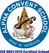 Primary Teacher Jobs in Faridabad - Alpha Convent School